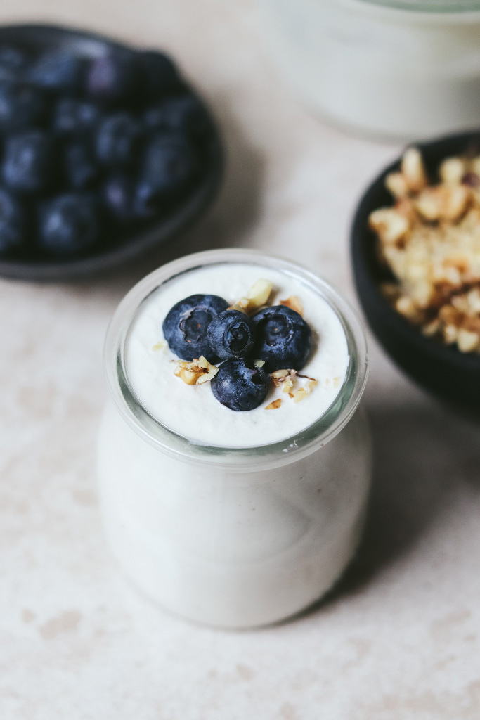 yogur casero soja
