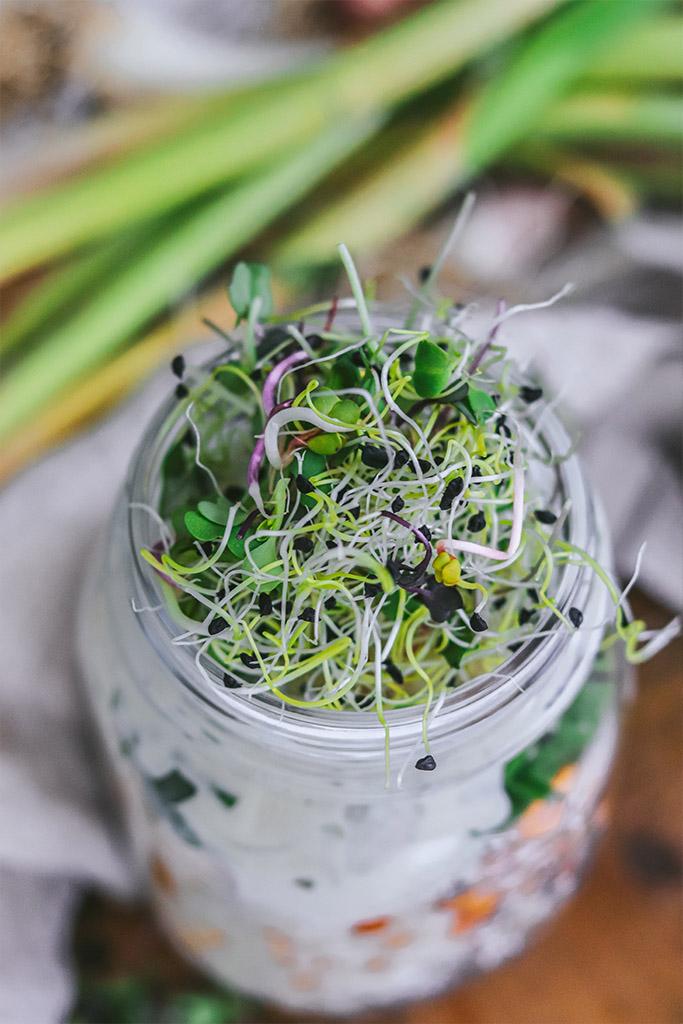 fuente proteinas vegetales